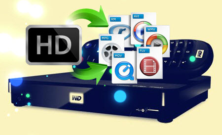 all movie file player