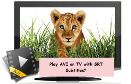 Avi to tv add subtitles to avi for tv playback samsung tv video an avi file is a very complicated format that can be encoded in various ways and your tv just wont be able to recognize all of them ccuart Images