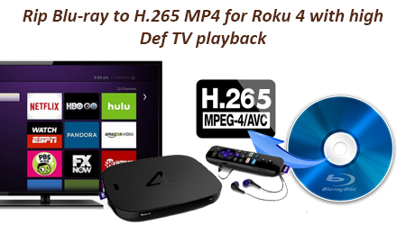 how to play mp4 with srt on roku